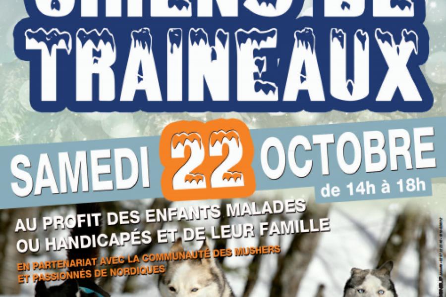 Chiens de Traineaux - ST MARCEL